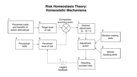 Homeostatic Mechanisms
