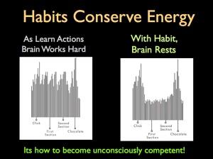 Habit Brain Rests copy