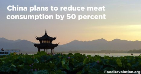 China-reduce-meat-consumption